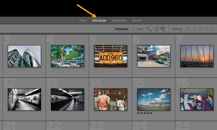 Using Star Ratings, Flags, and Color Labels in Lightroom