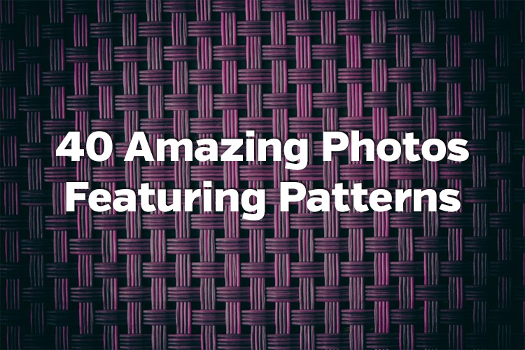 40 Amazing Photos Featuring Patterns