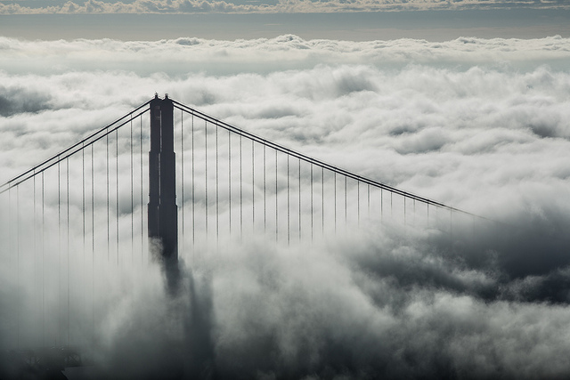 Gorgeous Photos Taken in Fog